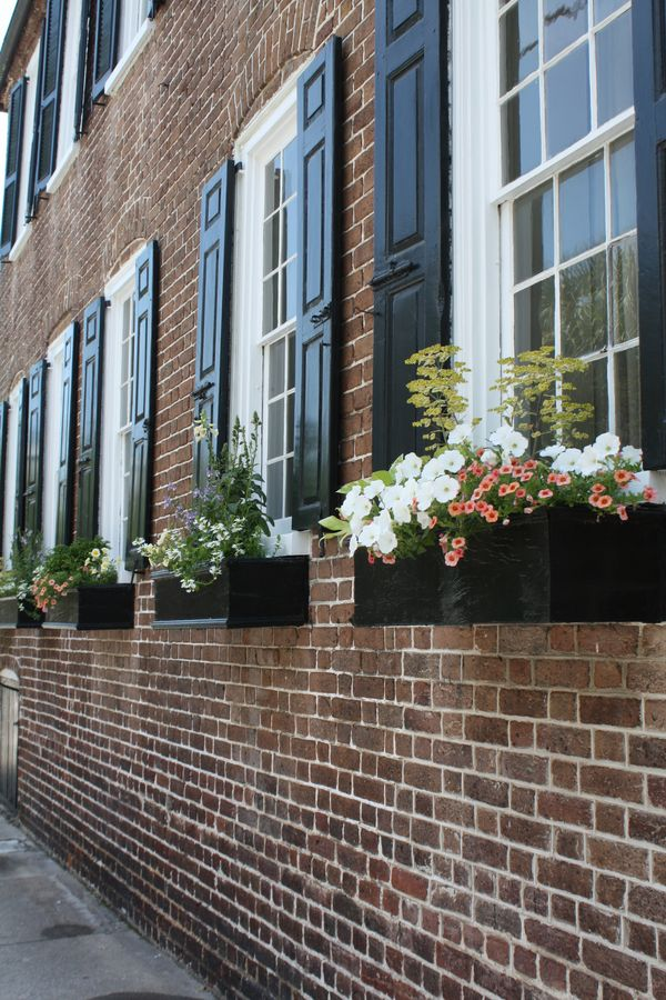 Finding Beauty Window Boxes Of Charleston South