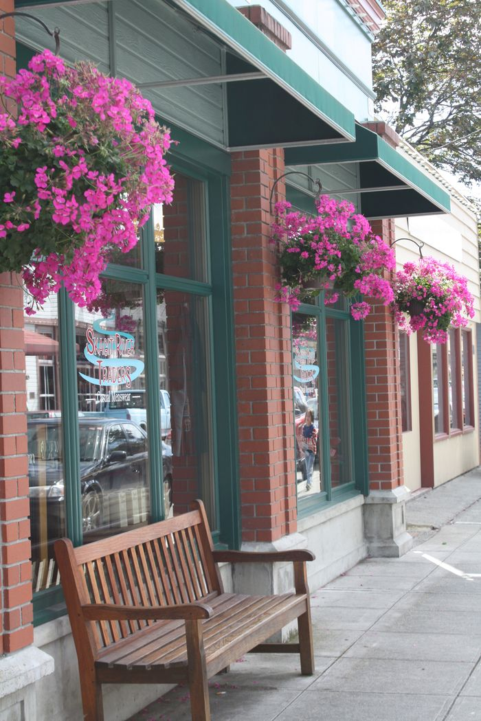 Pelargonium hanging baskets by candy store
