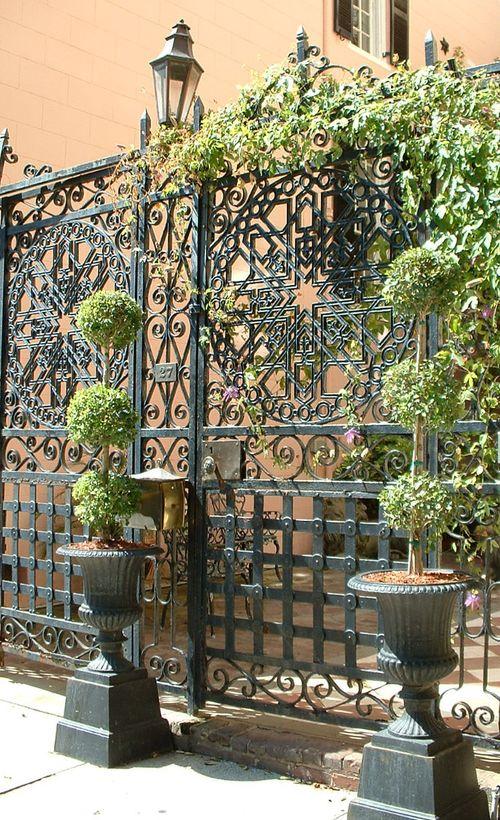 Pedestal plants