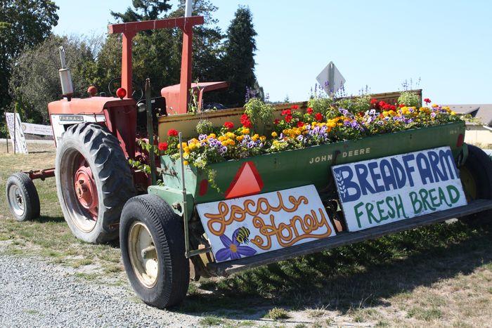 Farmall tractor display