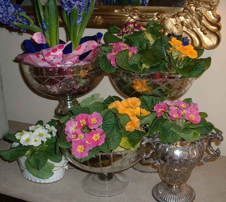 Foyer spring flower grouping jan 10