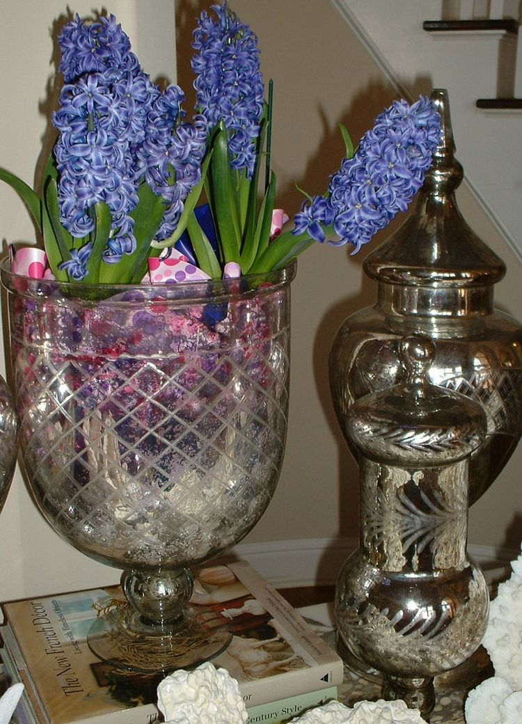 Jan 10 hyacinths in merc glass