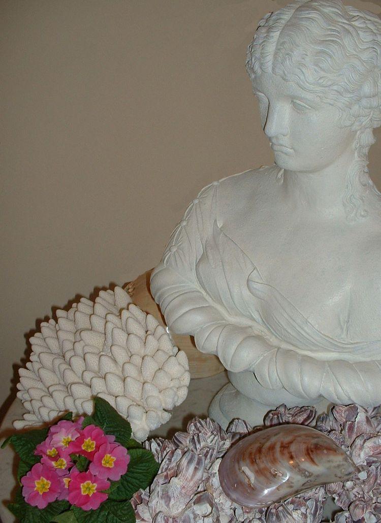 White pink lavender