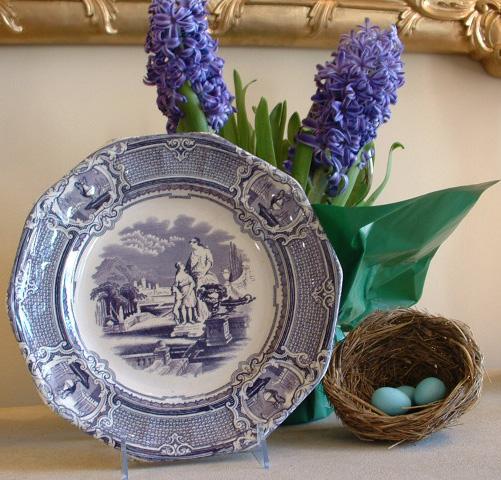 Purple transware plate