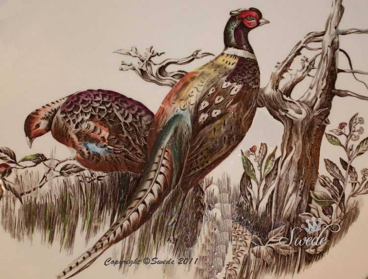 Pheasants on plate788