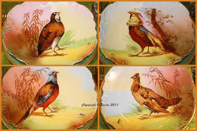 Four bird collage logo