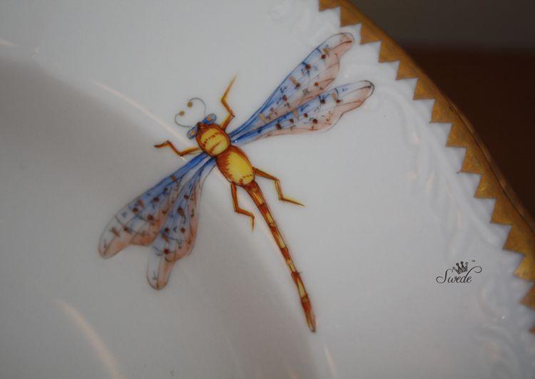 Swede dragonfly7938