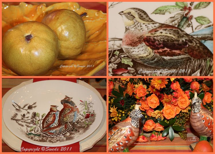 Collages2 quail birds logo
