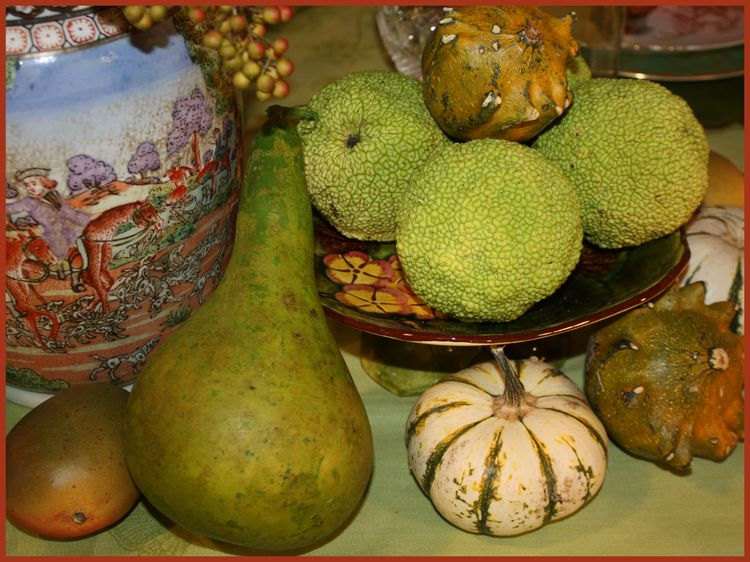 Gourds center close up