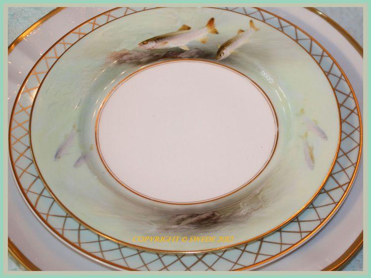 Single fish plate close up borderlogo