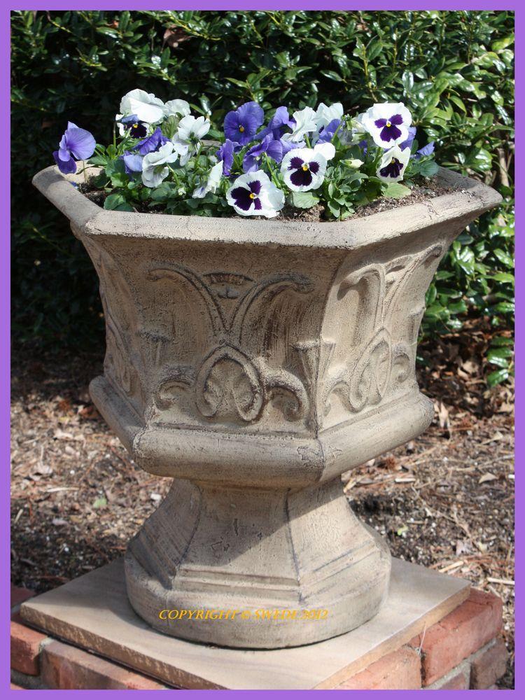 Pansey flowerpotlogo