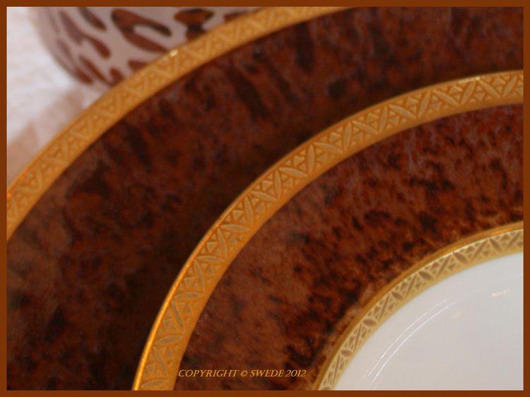 Tortoise plate edges logo