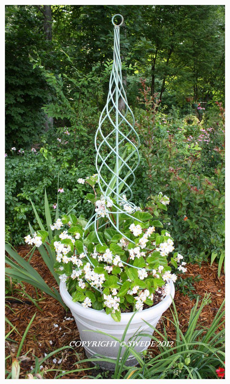 White pot under treelogo