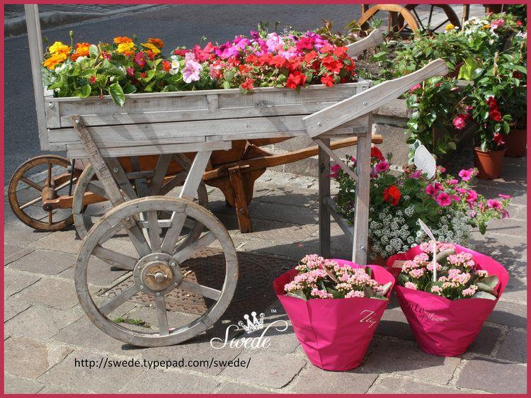 Floral cartslogo