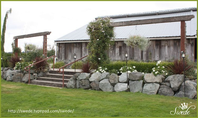Roses in rocks with barn