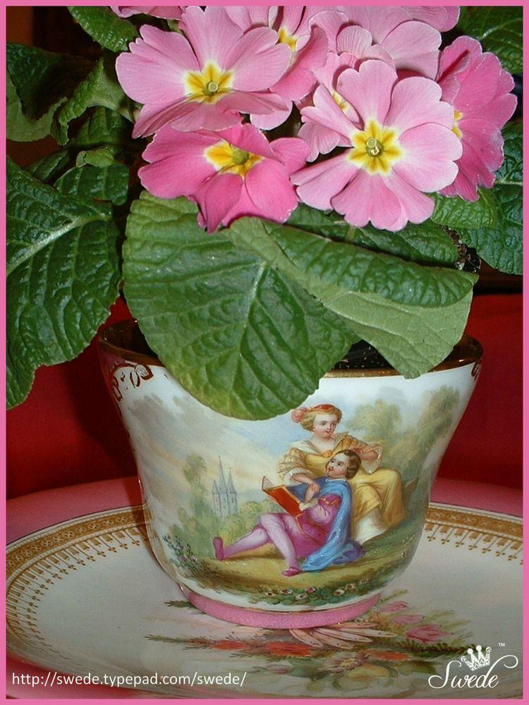 Loving couple teacup lo