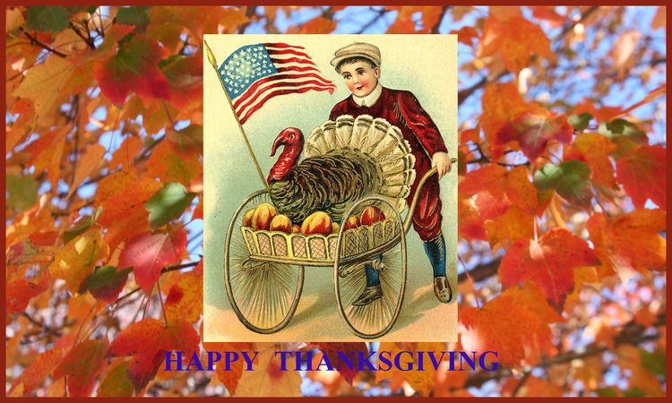 THANKSGIVING 2012 Greeting Card