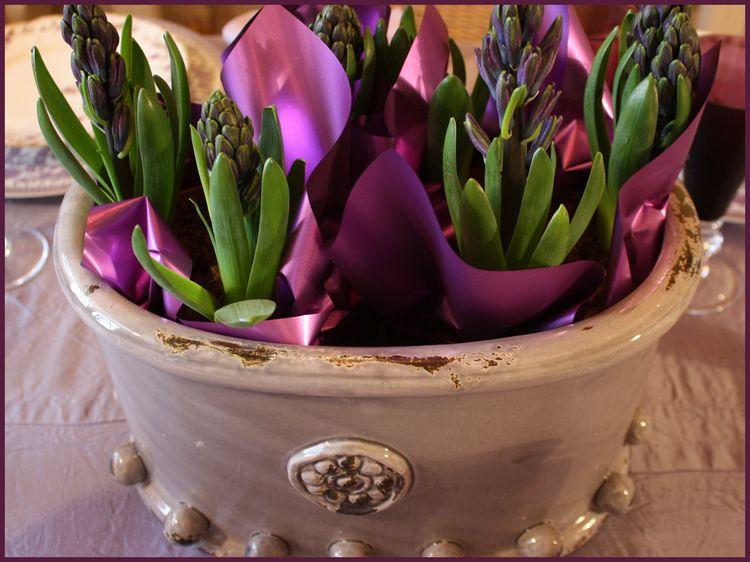 Hyacinth pot