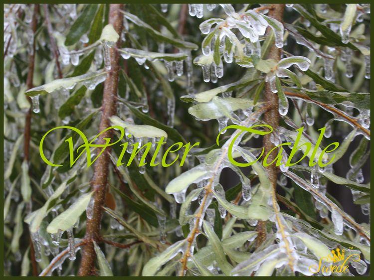 Blog winter tablelogo