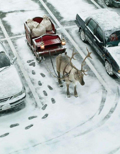 Santa Left Sleigh in Parking Lot