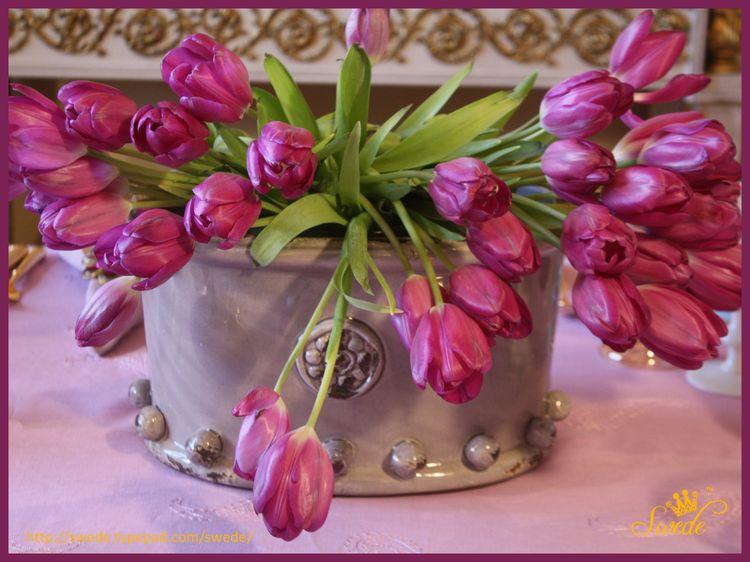 Tulip centerpiecelogo