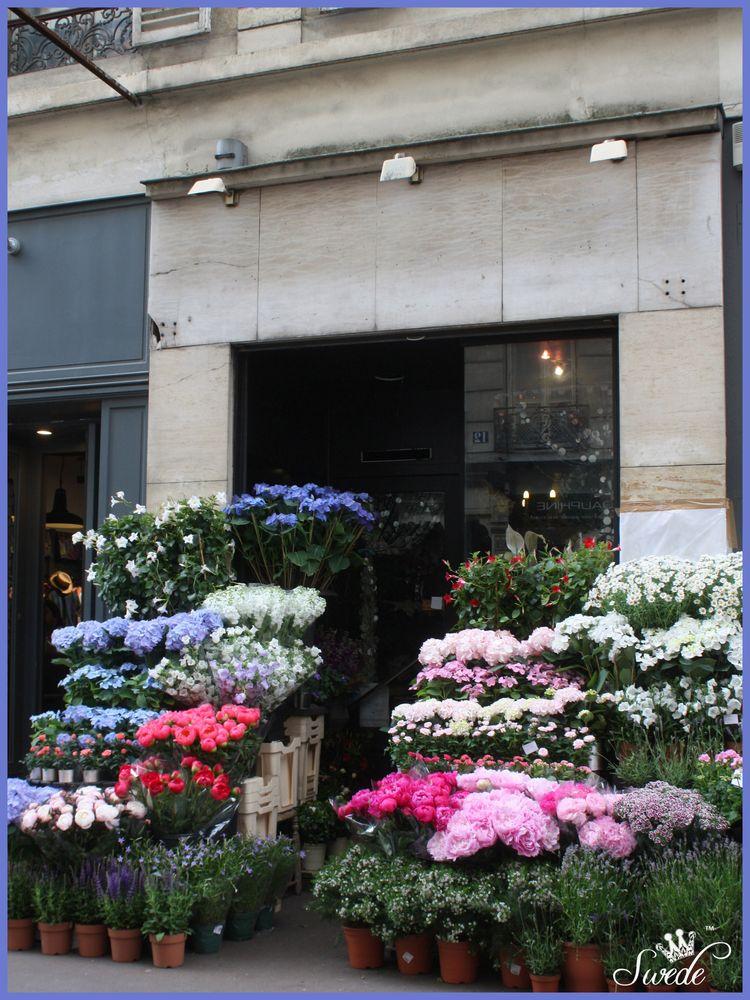 2014-06-038 florist shoplo